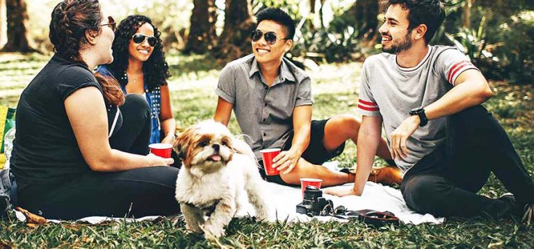 group-of-people-sitting-on-white-mat-on-grass-field-with-dog